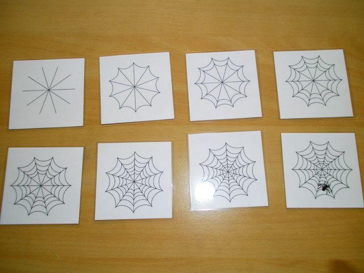 Logische volgorde: spinnenweb *liestr*