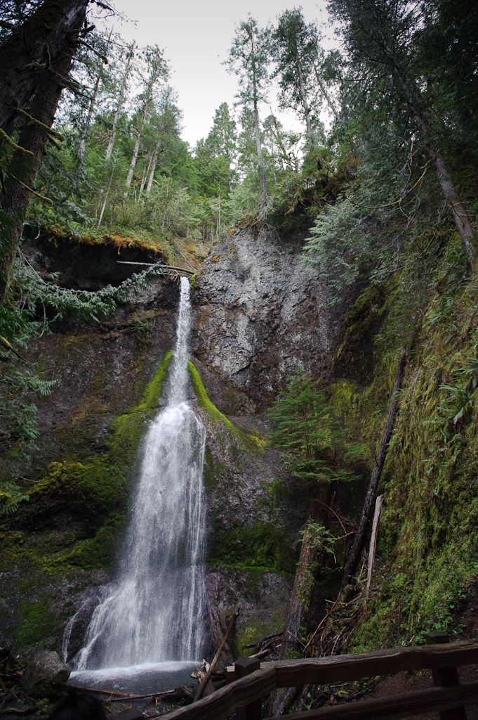 Marymere Falls - An enchanting waterfall near Lake Crescent in Olympic National Park.