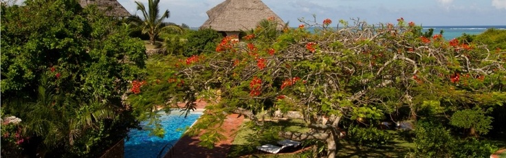 Tijara-Beach-Pool