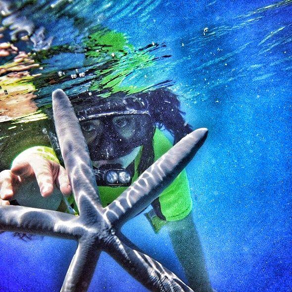 Catch the star ⭐️   #underwater #bunaken #manado