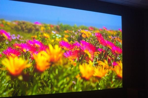 New Epson HDR Projectors in Store now! | The Listening Post Christchurch & Wellington