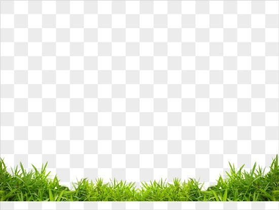잔디에 관한 상위 25개 이상의 Pinterest 아이디어  마당, 정원 ...