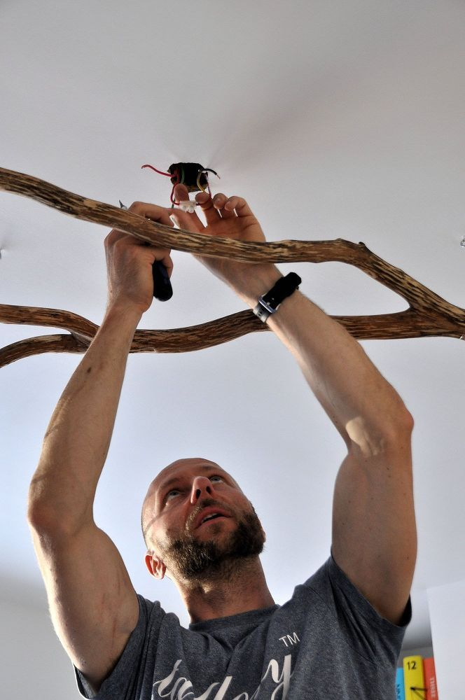 Bring a fallen tree branch home & guests won't take their eyes off your ceiling