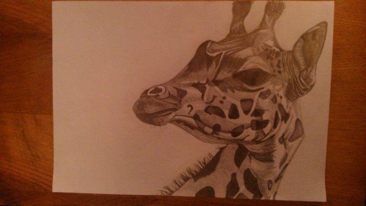 Pain draw girafe