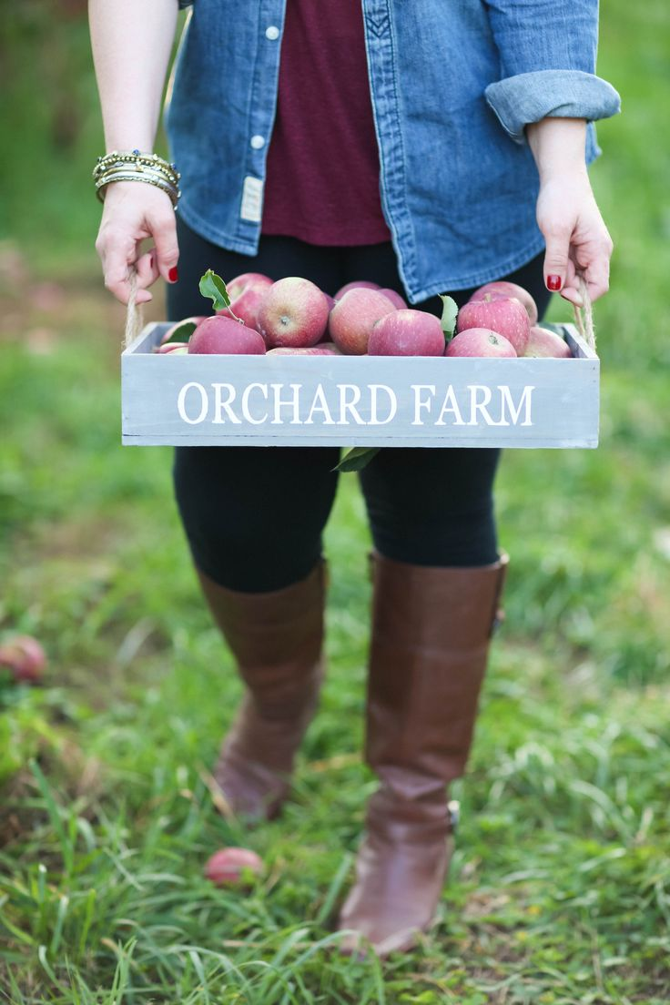 Orchard attire | Apple Orchard Engagement from Amy Rizzuto  Read more - http://www.stylemepretty.com/new-york-weddings/2013/10/31/apple-orchard-engagement-from-amy-rizzuto/