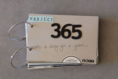 I know that everyone has already done a Project 365 already, but I haven't done one. I think that this would be a great way to break down the daily documentation.