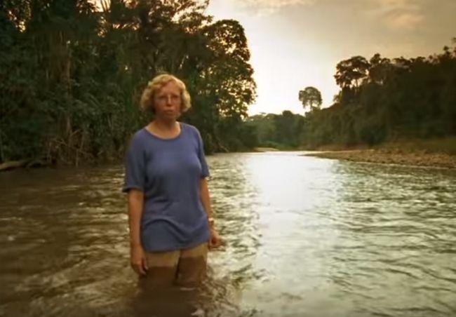 Juliane Koepcke - Bio, Facts, Life of Sole Survivor of ...