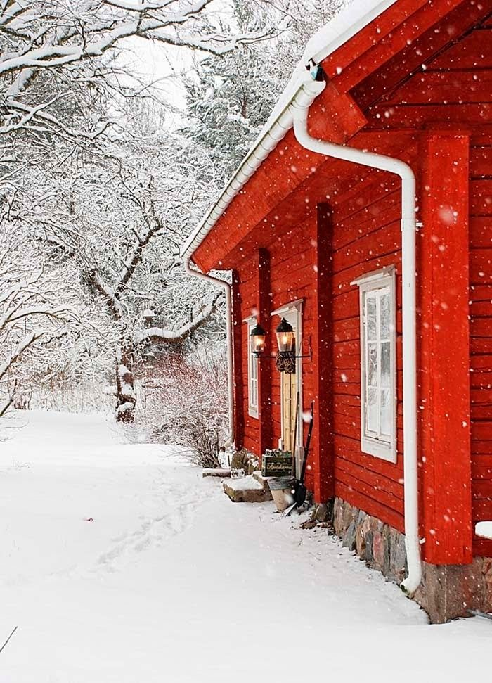 I've always loved the color red against the snow!