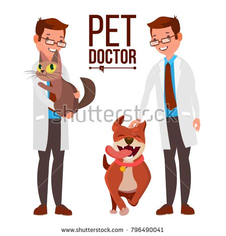 Veterinarian Male Vector. Dog And Cat. Medicine Hospital. Pet Doctor. Health Care Clinic Concept. Isolated Flat Cartoon Illustration