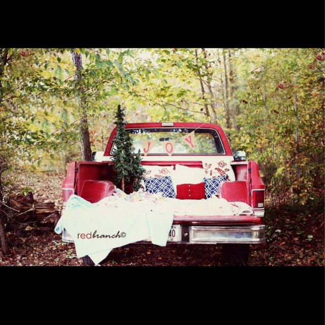 Christmas mini session | redbranch©