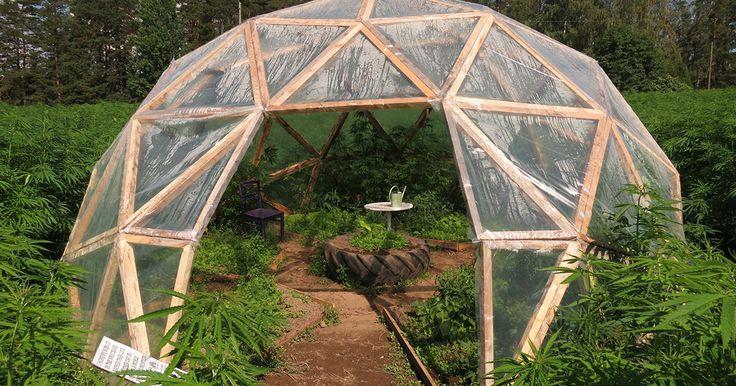 Installer une structure architecturale et esthétique dans son jardin vous offre une décoration extérieure originale. Avec ce kit de construction, vous pourrez créer votre propre dôme géodésique de manière simple et ludique à inté...