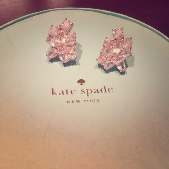 Kate Spade Earrings Selling these excellent condition like new Kate Spade earrings purchased from Trunk Club/Nordstroms in fall 2015.  They were $78.  Only wore a few times.  Comes with earring backings.  Only reason I'm parting with these gorgeous Kate Spade earrings is in Dec I bought myself real diamond earring studs so I wear those literally everyday now to justify the cost. kate spade Jewelry Earrings