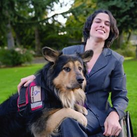 Melissa Mitchell chose Bastien in part because his Newfoundland/ Australian shepherd mix predisposed him to being gentle, medium-sized and energetic.