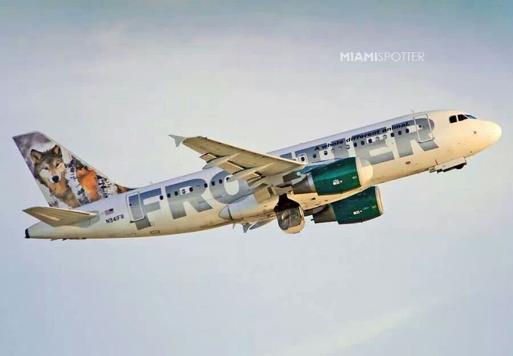 88 best frontier airlines pics images on Pinterest ...