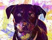 "New artwork for sale! - "" Rottweiler Dog Canine Face Animal  by PixBreak Art "" - http://ift.tt/2u8Y5gh"