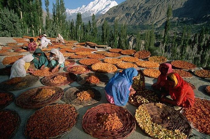 Secrets of the Hunza Valley