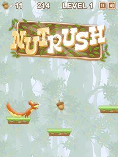 Play Nut Rush Online - FunStopGames