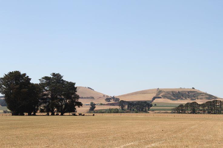 L1M1AP3 Landscape. ISO100, f/9, 1/250