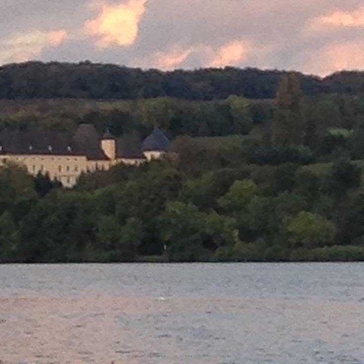 Αμπελώνες για Risling στις όχθες του Moselle