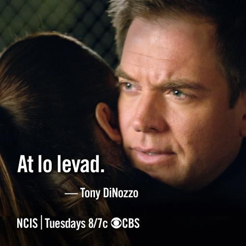 """""""At lo levad (You are not alone)"""" -Tony DiNozzo to Ziva David as she leaves for Israel after her dad dies. NCIS quotes"""