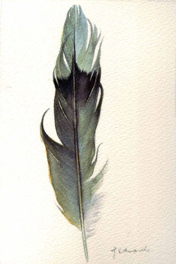 Feather 122 - Mourning Dove Feather- Original Watercolour - Nightly Study March 5th by Jody Edwards