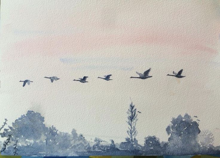 Love the colours on this. Swans Flying. Watercolour