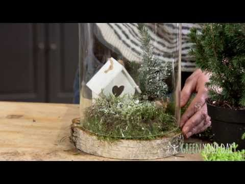 Stilleven onder stolp met hout - Green your day