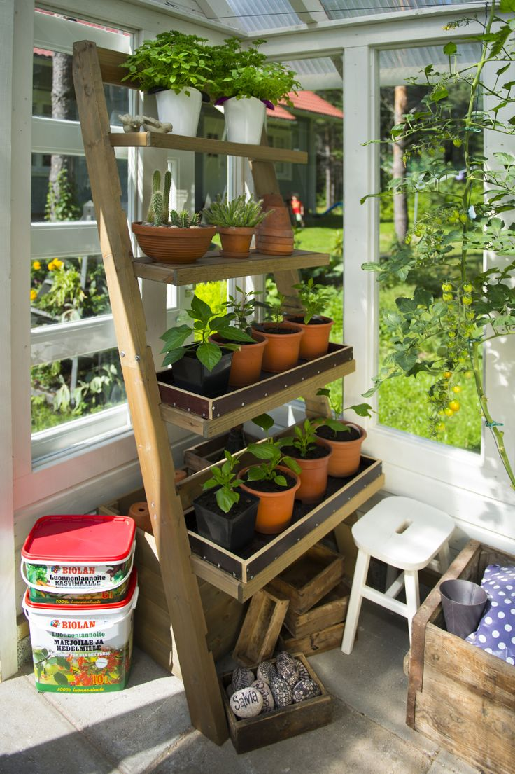 Biolan-ladders for greenhouse, terrace etc. http://www.biolan.fi/suomi/puutarhaharrastajat/puutarhatuotteet/parveketarha