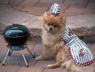 Image result for dog bbqing