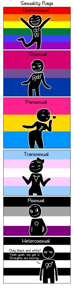 I support everyone no matter their sexuality. Be who you are.  (No me hace mucha gracia que el monigote de la bandera bisexual tenga esa cara, pero la reacción del het me hace gracia xD)