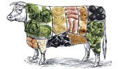 10 Ways to Eat Less Meat:  I, personally, initially clicked on this article confused as to WHY I would want less meat.  However, Strategy Number 1 (which includes wonderful words like:  bacon, ham, salami, pancetta, or sausage) immediately caught my attention.  =o)