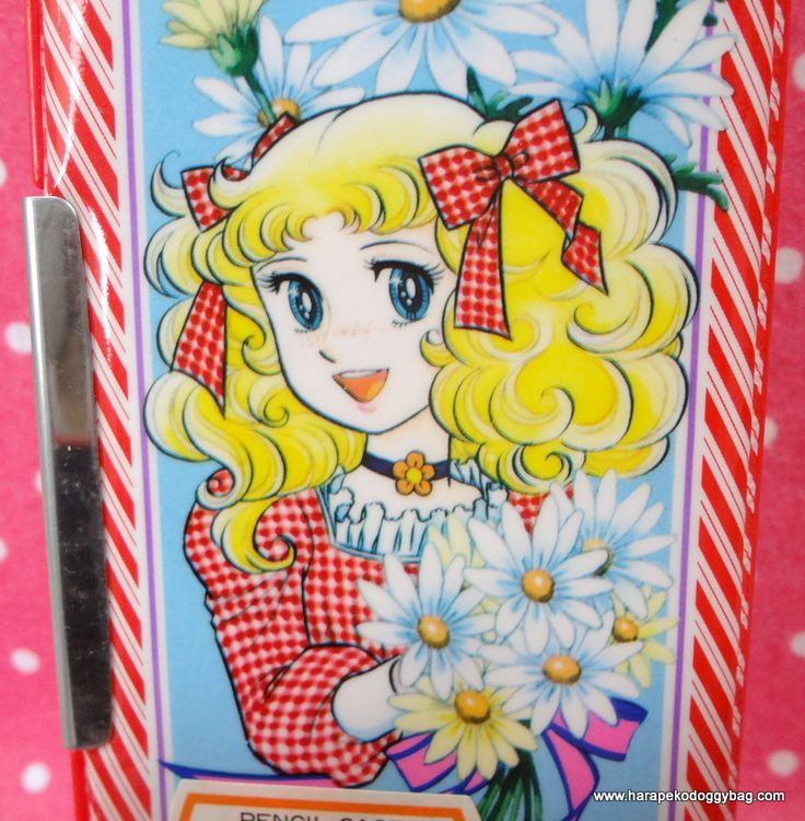 Kawaii Vintage Candy Candy Pencil Case Japan - Google Search