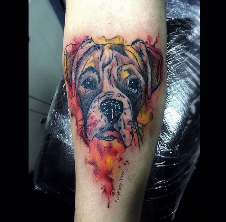 Boxer dog tattoo.