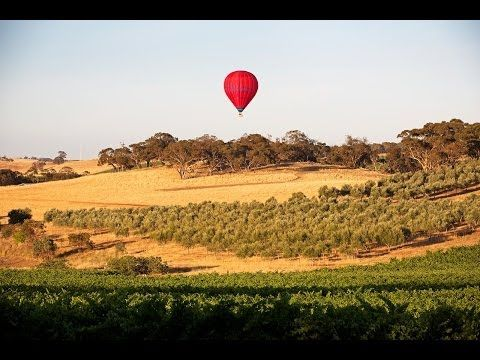 The Tailor - The finest collection of hand crafted Australian journeys. Luxury & Wine in the Barossa Valley. Travel // Holiday // Vacation // Luxe // Australia