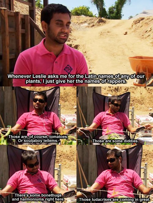 "Parks & Rec. Aziz. Tom Haverford. Plant names. ""These Ludacris are coming in great."""