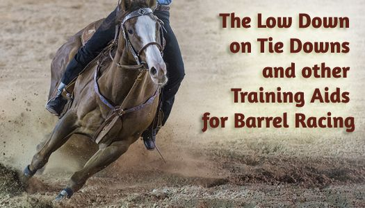 The Low Down on Tie Downs and other Training Aids for Barrel Racing | BarrelRacingTips.com