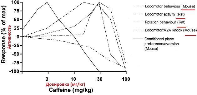 кофеине