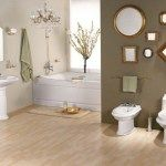 modern classic bathroom ideas with brass fixtures and accessories