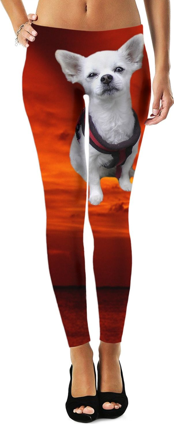 Check out my new product https://www.rageon.com/products/dog-chihuahua-leggings?aff=BWeX on RageOn!