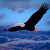 Un promeneur en montagne découvrit un nid d'aigle abandonné où il trouva un oeuf. Il le prit avec délicatesse et le confia à un fermier, dans l'espoir de le faire couver par une poule. Peu de...