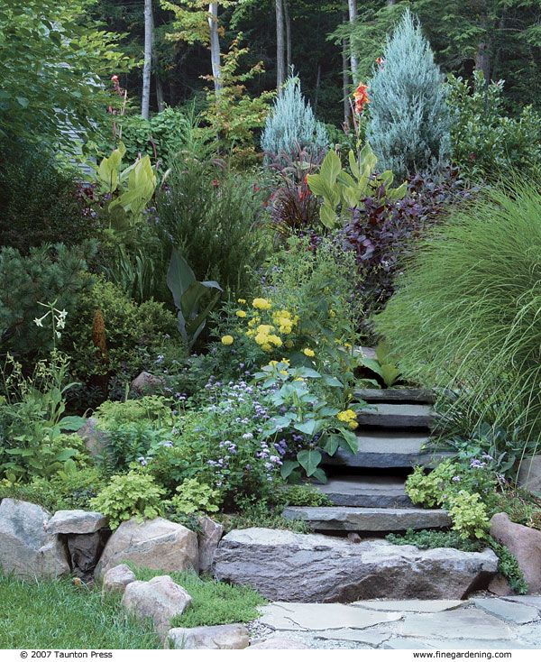 17 best images about low maintenance gardening on for Creating a low maintenance garden
