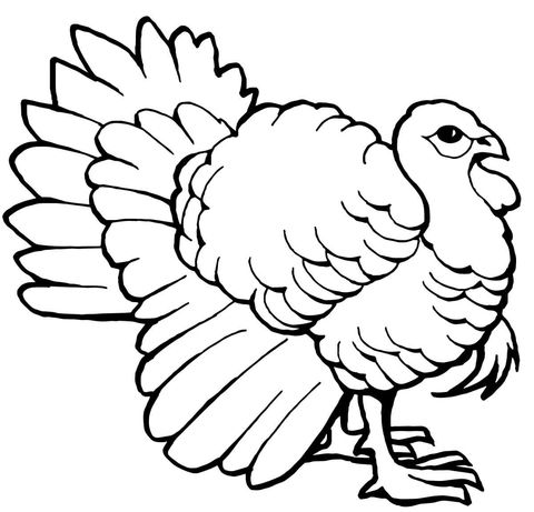 22 best Thanksgiving Coloring Pages images on Pinterest