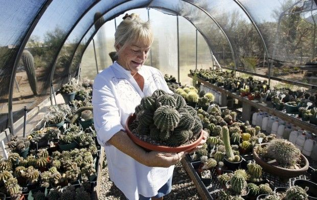 Where To Find Tucson Gardening Groups That Focus On Specific Plant Species,  Like Cactus Or