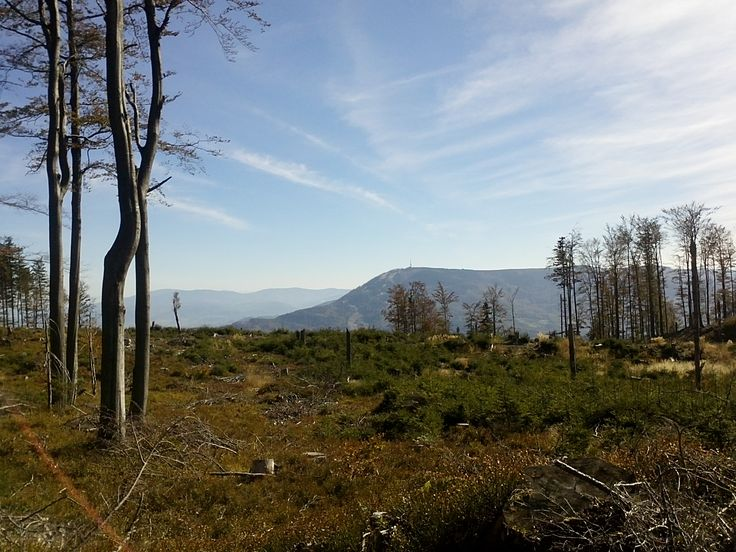 A view on the #Skrzyczne - route from #Szyndzielnia to Błatnia, #polishmountains, #beskidy