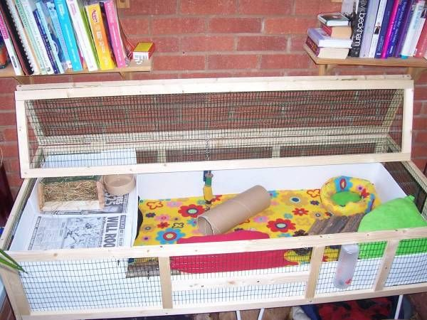 9 best images about guinea pig cage ideas on pinterest for Guinea pig cage made from bookshelf