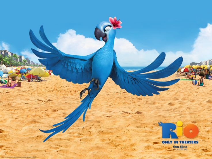 Click here to download in HD Format >>       Jewel In Rio Movie Wallpapers    http://www.superwallpapers.in/wallpaper/jewel-in-rio-movie-wallpapers.html