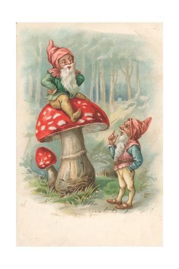 картинка гнома с грибами густого леса