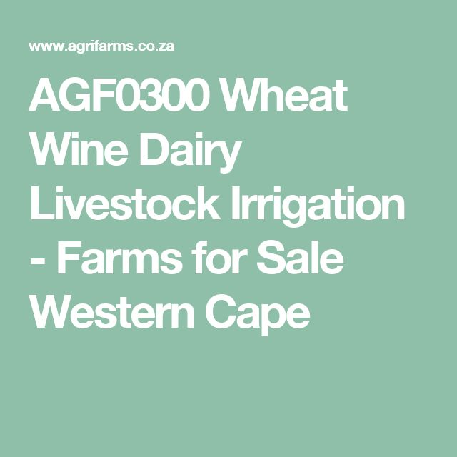AGF0300 Wheat Wine Dairy Livestock Irrigation - Farms for Sale Western Cape
