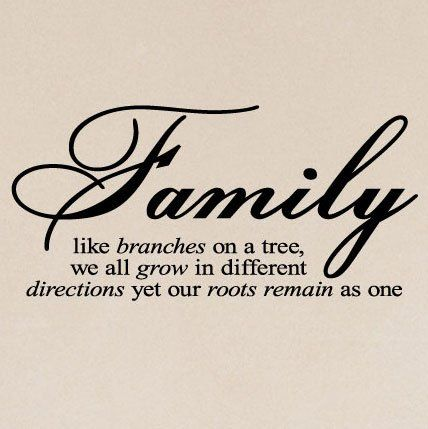 I love my familyFamilies Quotes, Family Quotes, Life, Family Trees, Inspiration, Roots, So True, Families Trees, Things