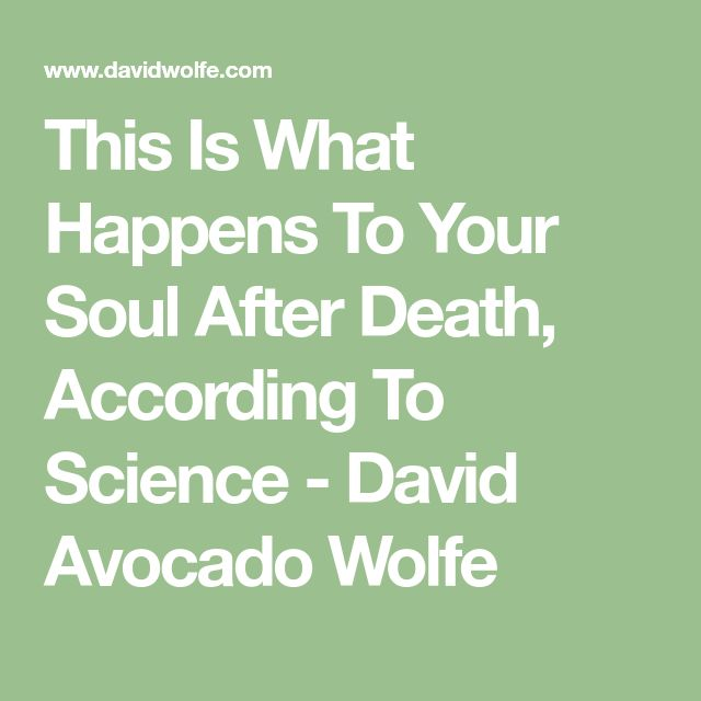 This Is What Happens To Your Soul After Death, According To Science - David Avocado Wolfe